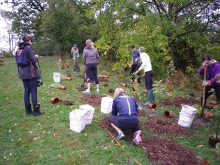 cedarvale-choir-retreat-and-tree-planting-052