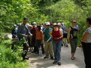 Cedarvale Bird walk and mulching 018