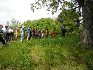 Cedarvale Bird walk and mulching 022