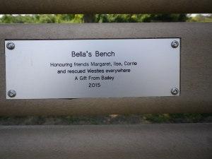 Cedarvale benches, tree 007