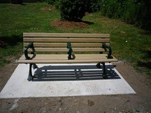 Cedarvale benches, tree 008