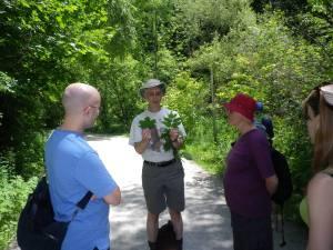 Cedarvale John Routh walk 098