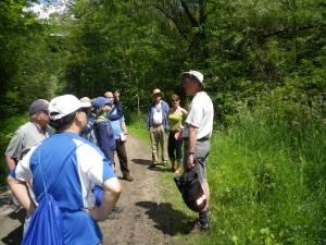 Cedarvale John Routh walk 100