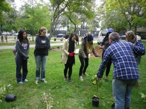 Cedarvale planting Oct. 2015 008
