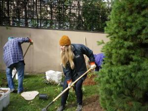 Cedarvale planting Oct. 2015 014