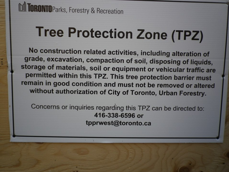 Cedarvale tree protection 750