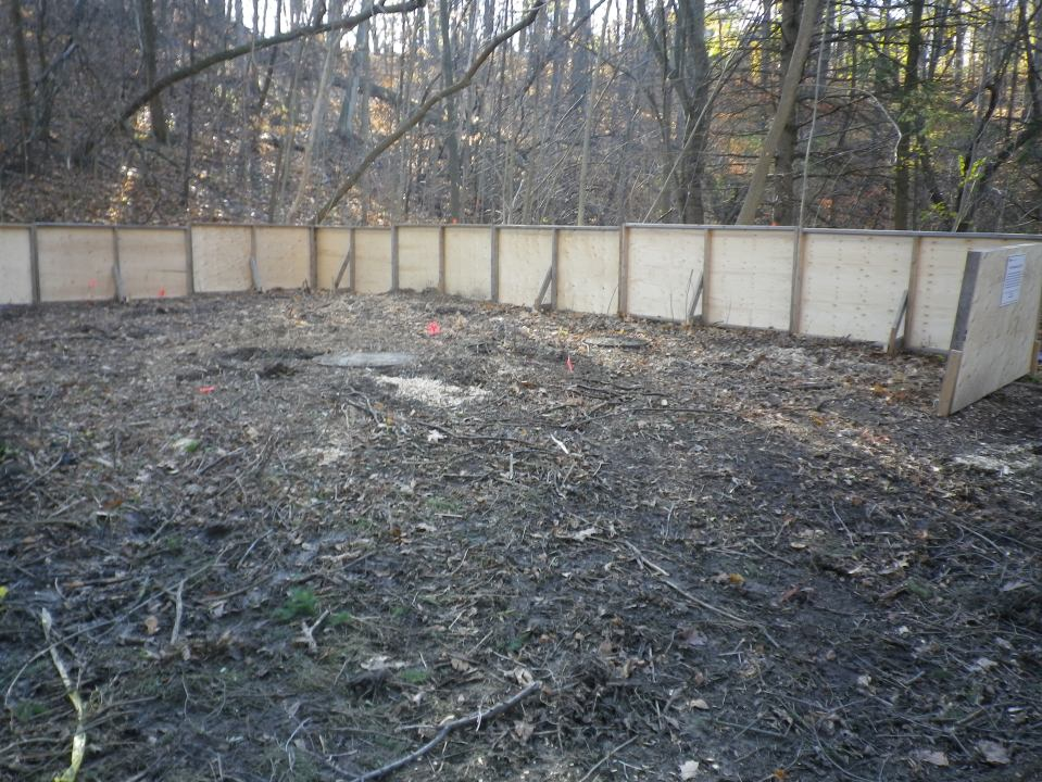 Cedarvale tree protection 752