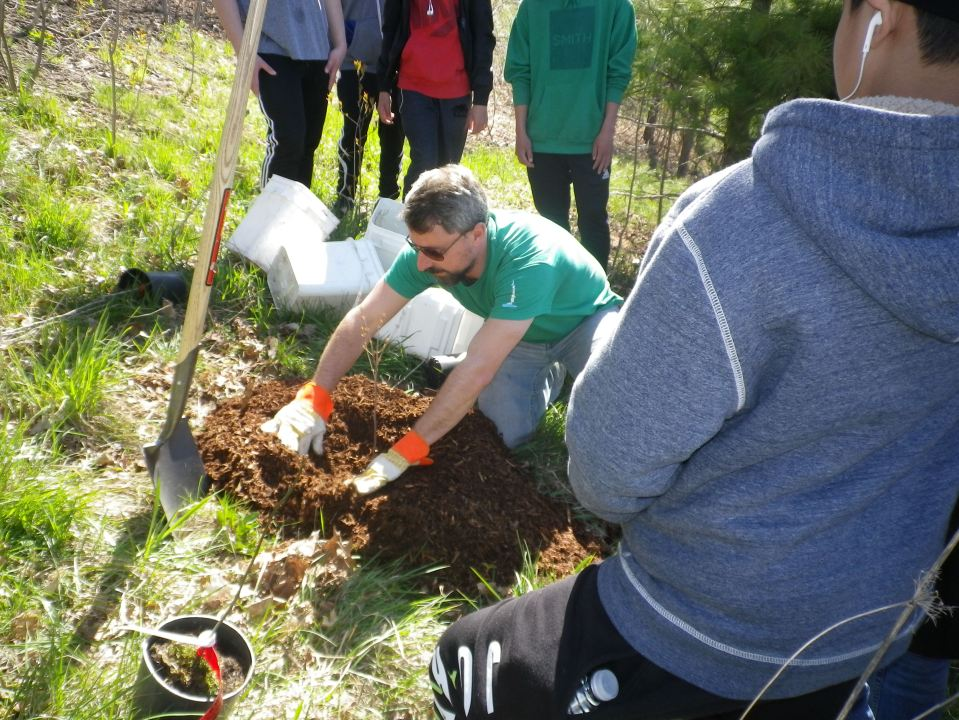 Cedarvale Tree planting May 2016 009