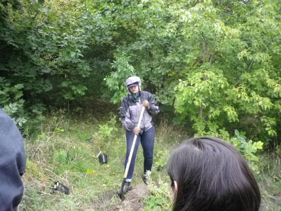 cedarvale-tree-planting-oct-1-2016-019