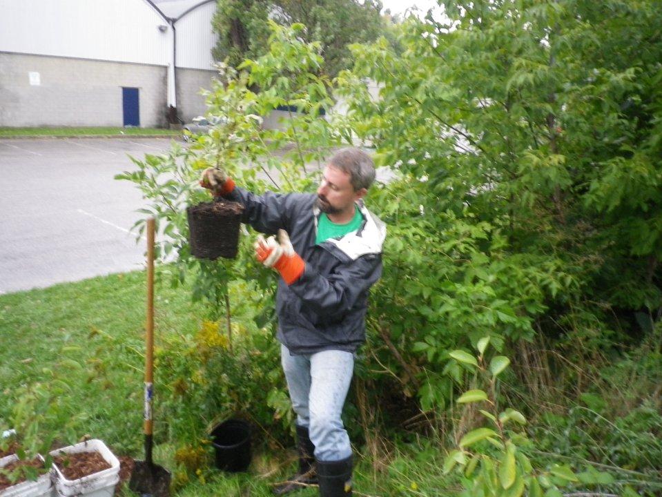 cedarvale-tree-planting-oct-1-2016-027