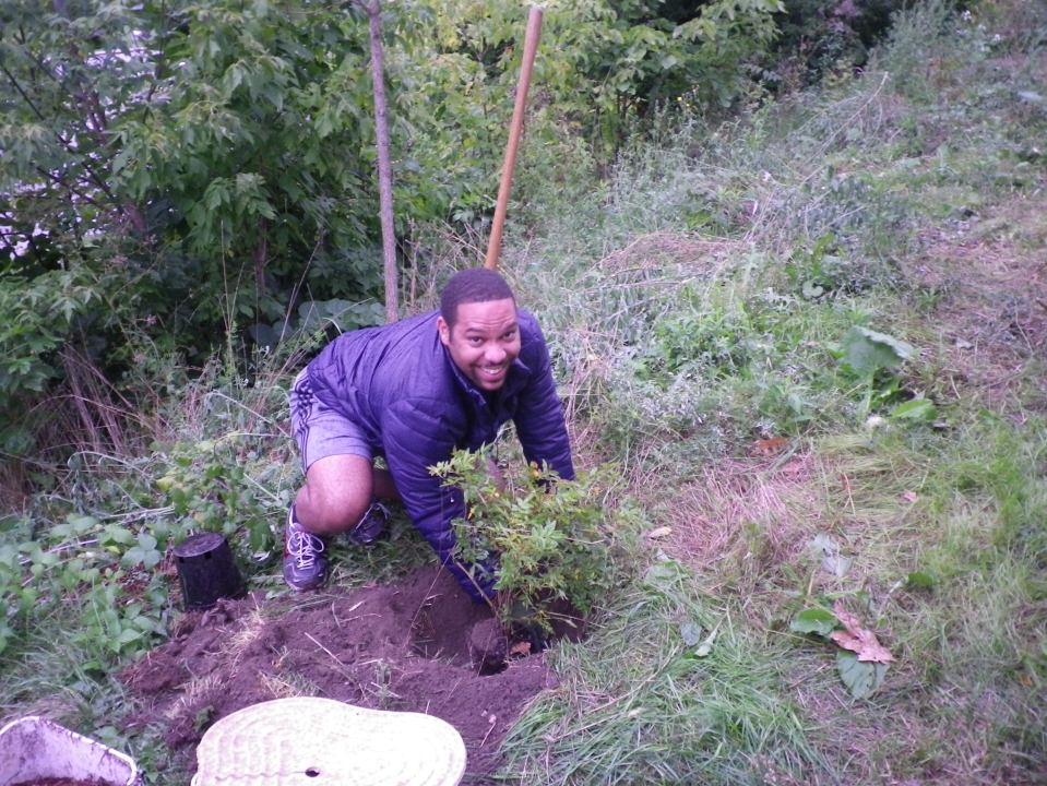 cedarvale-tree-planting-oct-1-2016-030
