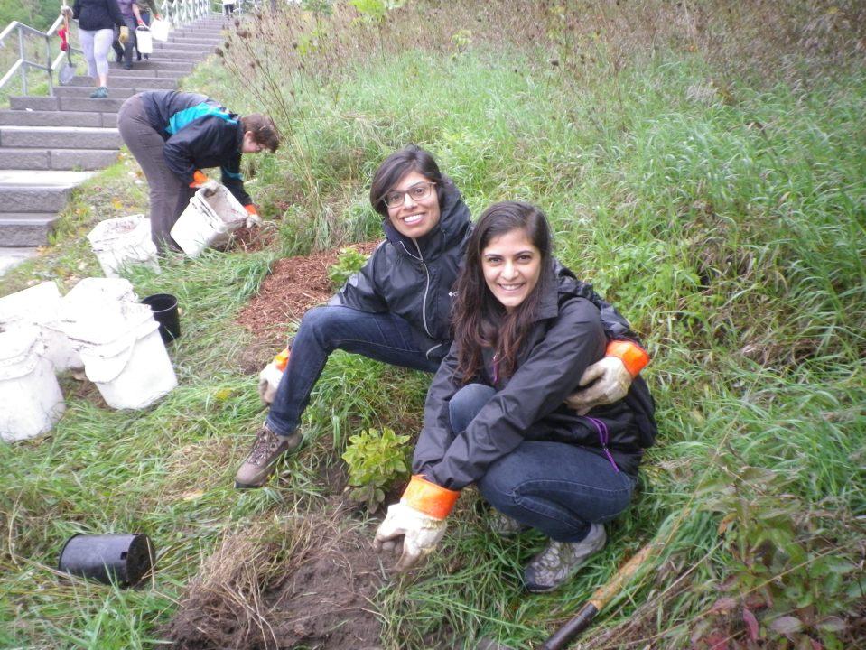 cedarvale-tree-planting-oct-1-2016-034