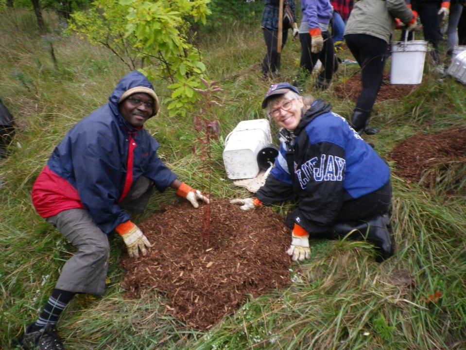 cedarvale-tree-planting-oct-1-2016-037