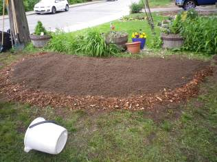 The plot before planting