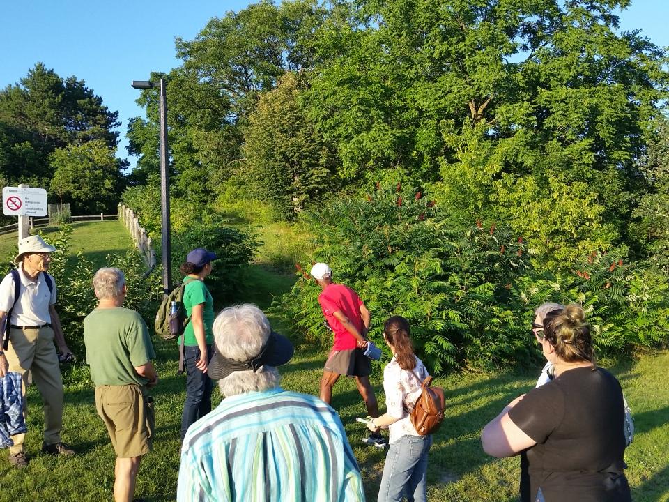 Cedarvale flower walk July 10