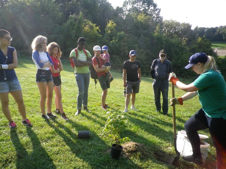 Cedarvale planting Sept. 17 008