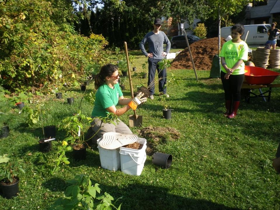 Cedarvale planting Sept. 17 010