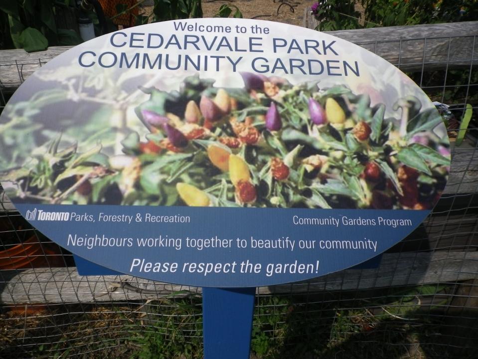 Cedarvale Sept. 16, 2017 067