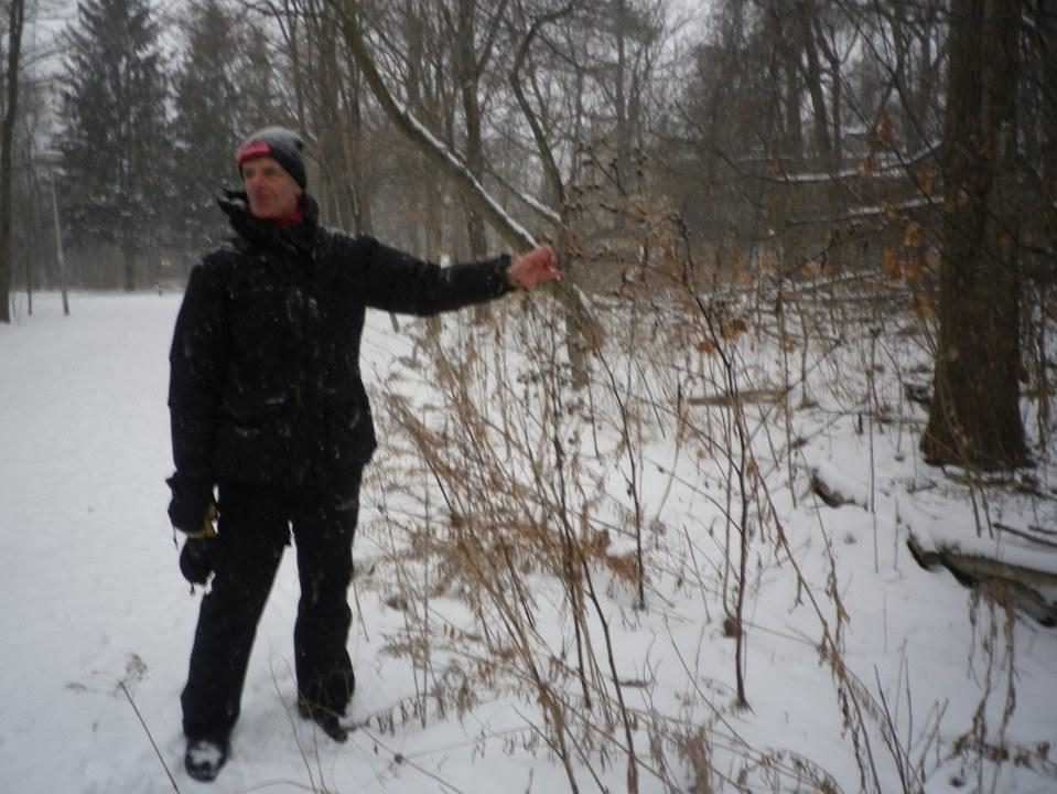 Cedarvale winter walk 021