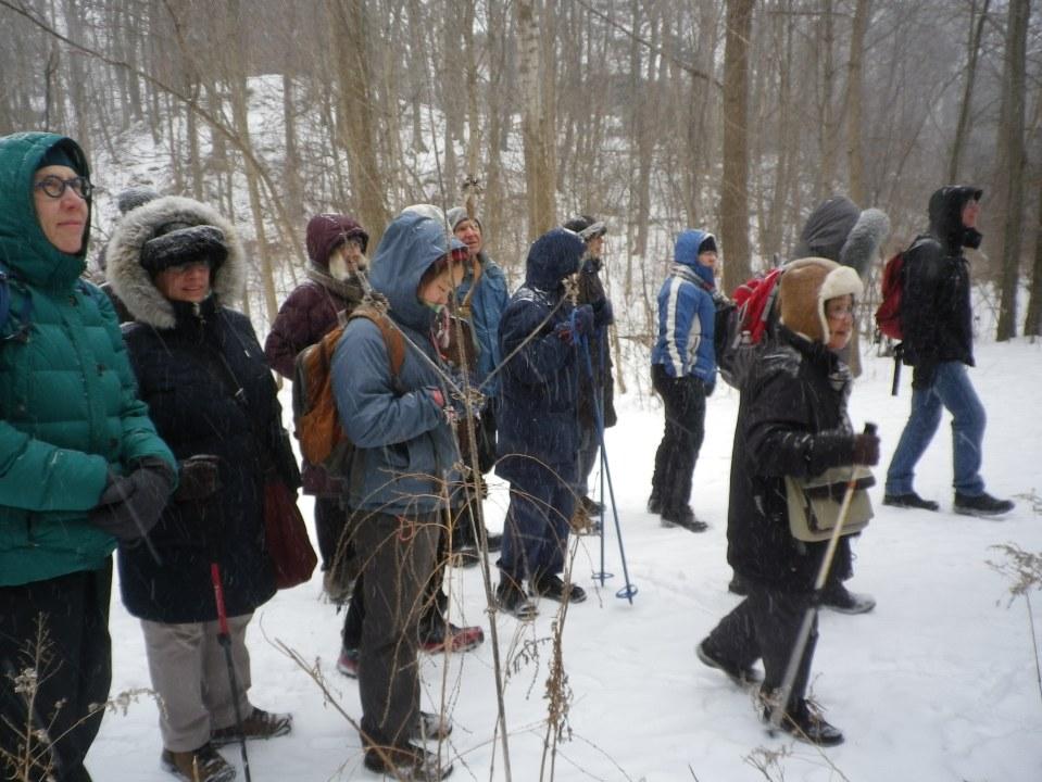 Cedarvale winter walk 022