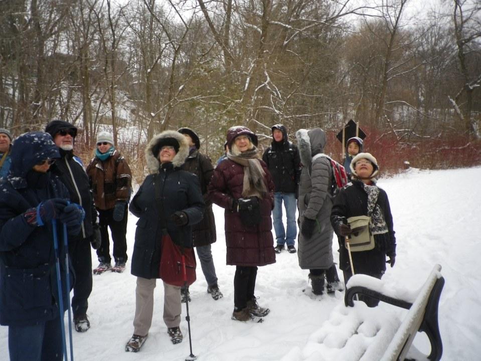 Cedarvale winter walk 029