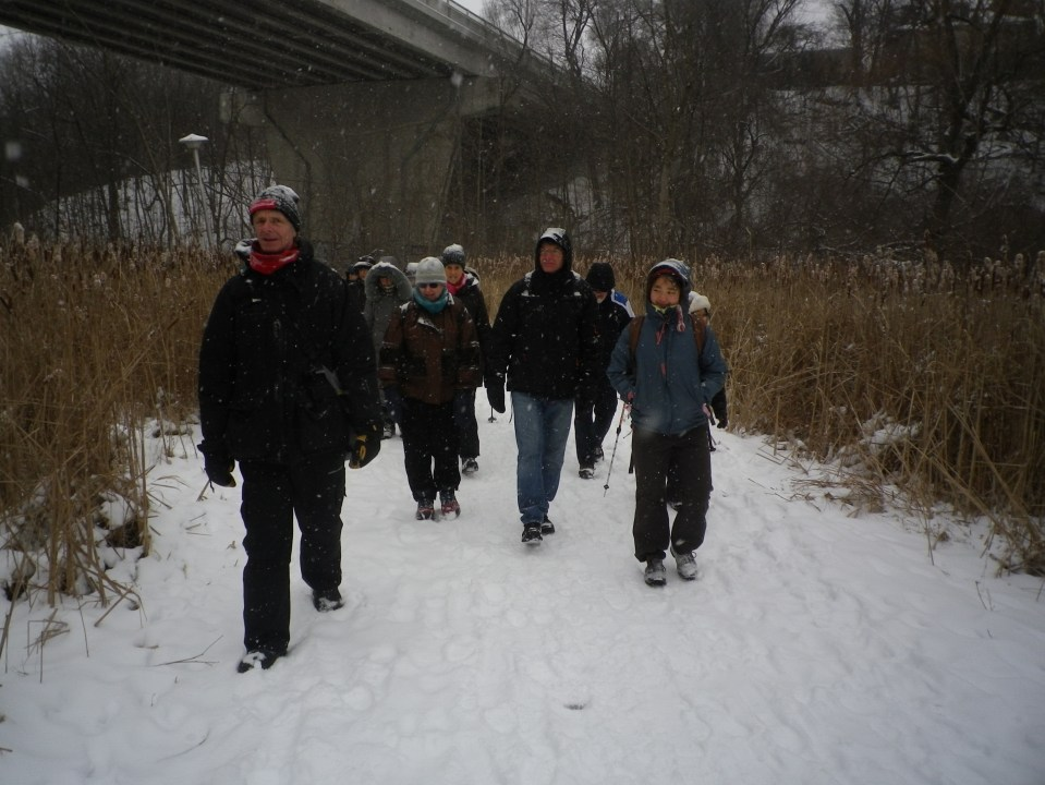 Cedarvale winter walk 030